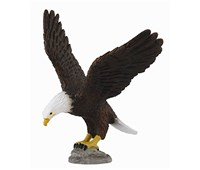 COLLECTA Aquila