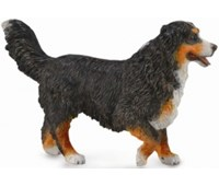 COLLECTA BOVARO DEL BERNESE
